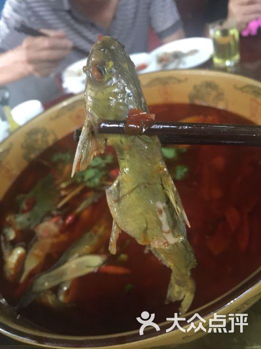 肖坝美食鱼庄-图片-乐山生态-大众点评网两美食店英内图片