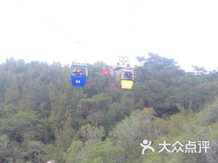 园林植物园-钟鼓山景区空中缆车图片-厦门周边游-大众