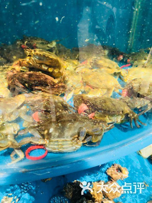 壁纸 风景 海底 海底世界 海洋馆 摄影 水族馆 桌面 525_700 竖版 竖
