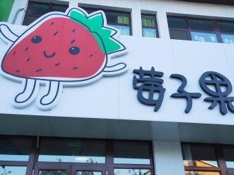 莓子果安亲托教
