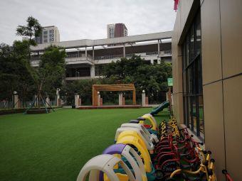 菁芙蓉幼儿园