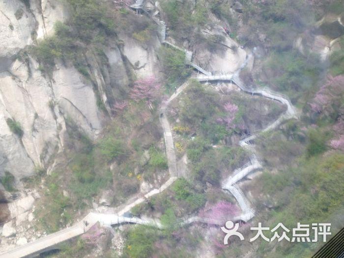 华山景区官方直营-图片-西安生活服务-大众点评网
