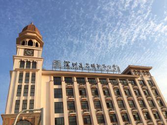 深圳道尔顿新华公学