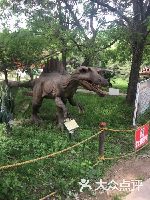 太原ag游戏直营网|平台园恐龙世界图片 - 第6张