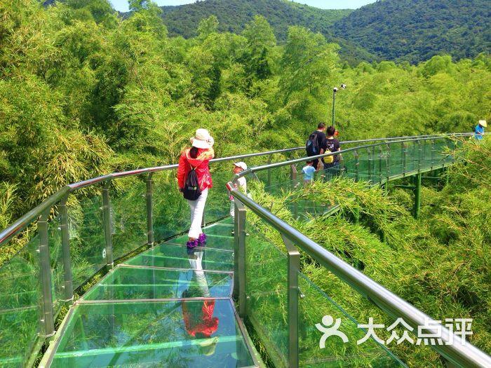 陶祖圣境风景区-图片-宜兴周边游-大众点评网