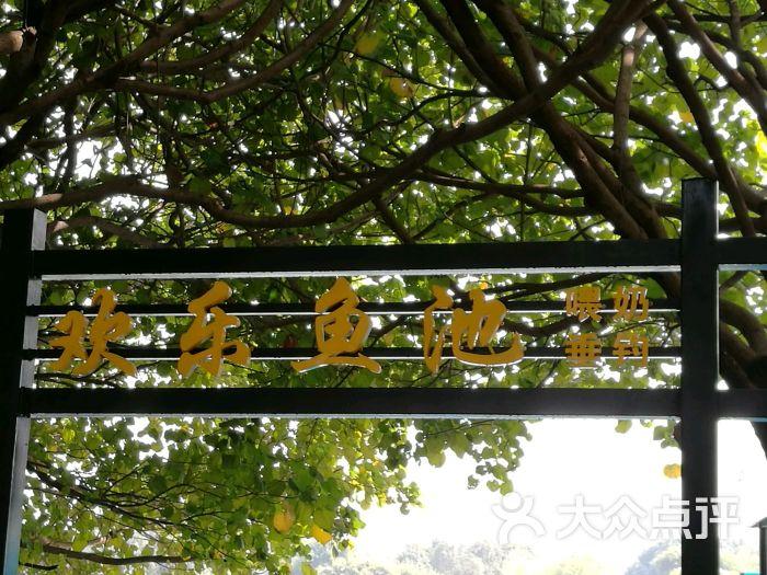 东莞寮步香市动物园图片 - 第73张