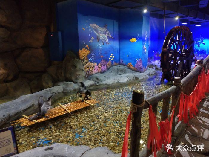嗒咪动物奇幻乐园(杭州店)图片 - 第223张