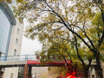 山东省淄博第十七中学