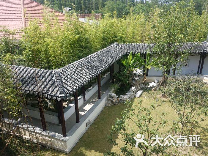 森林漫心度假酒店--环境景观图片-崇明县酒店-大众