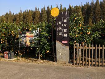 顾家柑橘采摘园