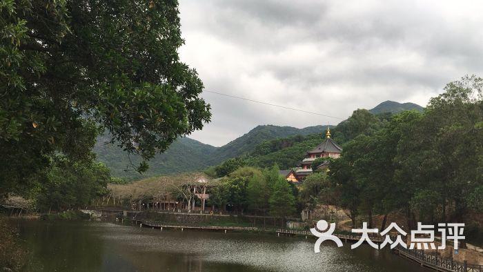深圳园山风景区-图片-深圳周边游-大众点评网