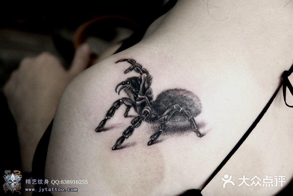 精艺纹身工作室-狼蜘蛛图片-上海丽人-大众点评网