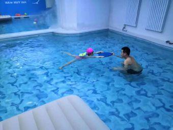 海豚湾游泳