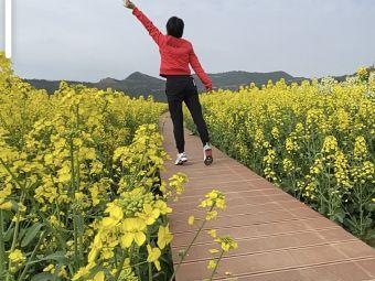 鸭鹤岩风景区
