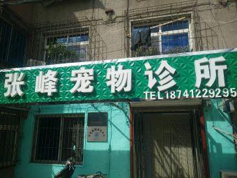 张峰宠物医院