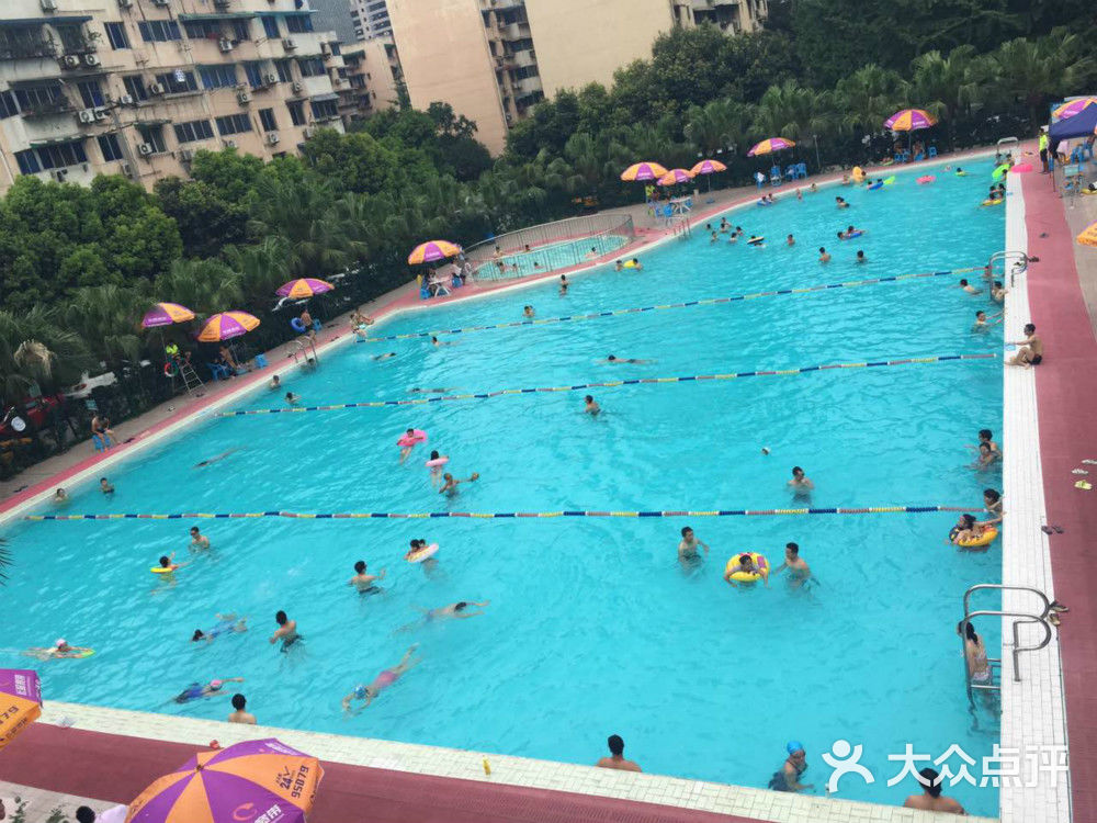 儿童游泳票-芳草地大型游泳池-成都结婚-大众点评网