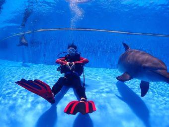 珠海特缔思潜水服务有限公司