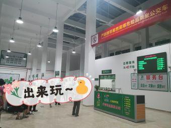 长兴岛汽车站