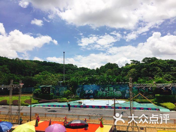 深圳野生动物园图片 - 第13张