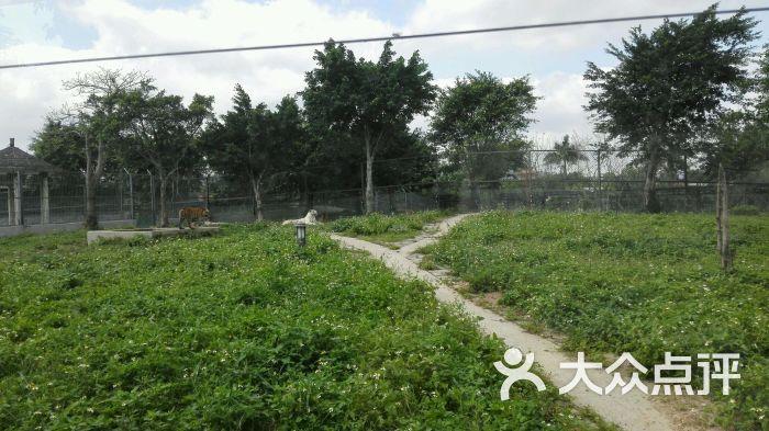 东莞寮步香市动物园图片 - 第478张