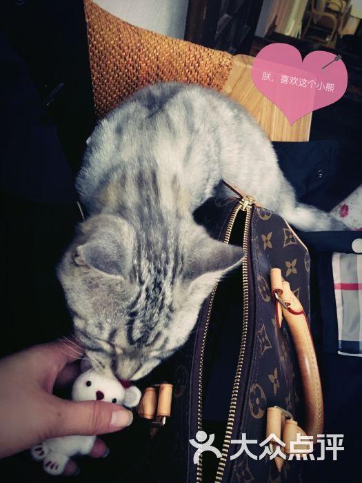 牧马音乐咖啡(牧马吉他教室)-图片-上海美食-大众