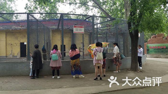 渭滨公园动物园图片 - 第8张