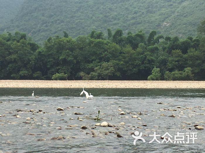 桂林漓江风景名胜区图片 - 第12张