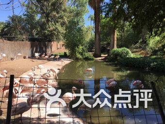 凤凰城动物园