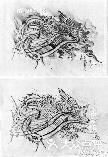 凤凰的素描画步骤图片