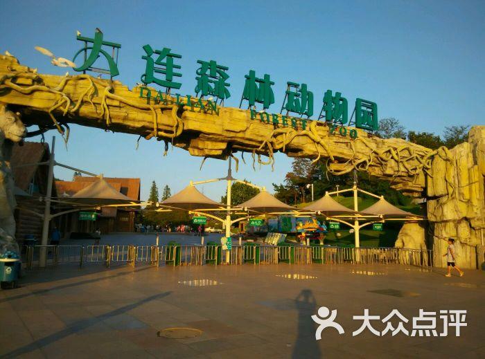 大连森林动物园图片 - 第3张
