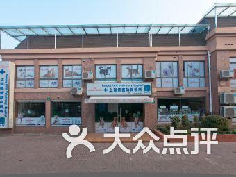 佩兹动物医疗(浦东店)