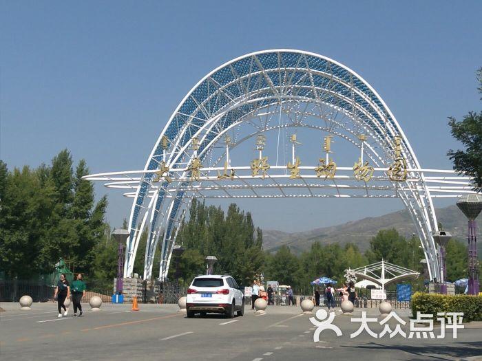 大青山野生动物园图片 - 第79张