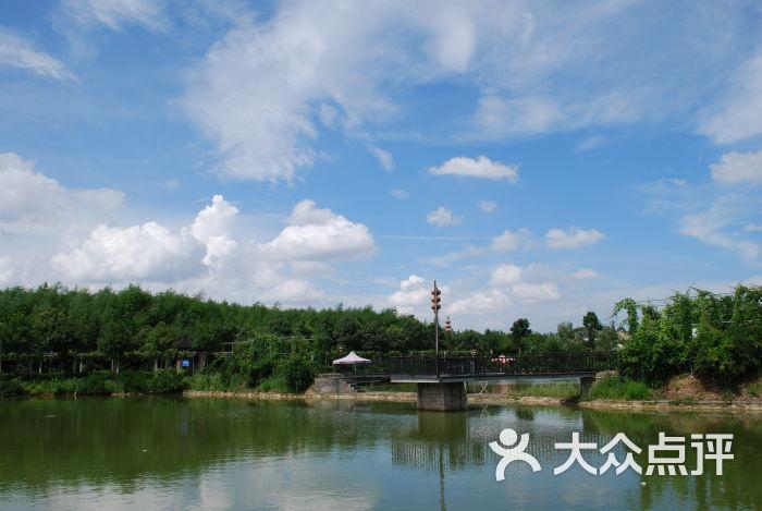 武汉竹馨庄园水上栈道图片 - 第7张