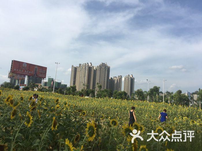 公园一号-图片-湛江生活服务-大众点评网
