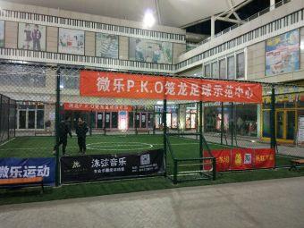 微乐运动p.k.o笼式足球场