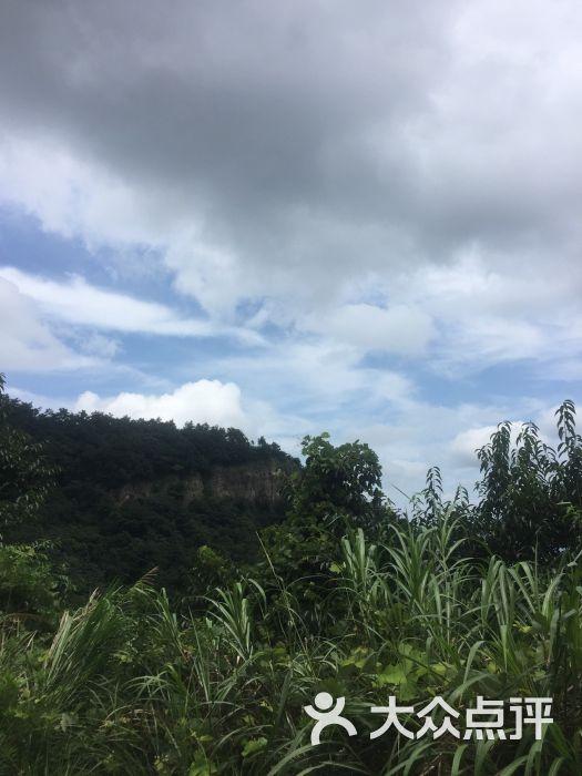 南天目森林公园-图片-临安周边游-大众点评网