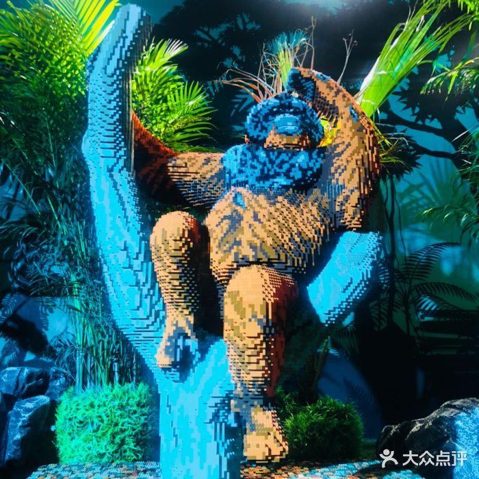 乐高动物王国环保展鸟巢站图片 - 第3张