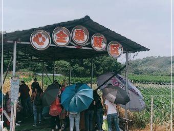 河东心全生态园
