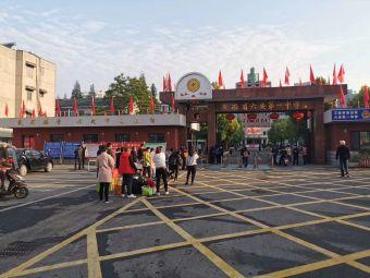 安徽省六安第一中学(解放北路校区)