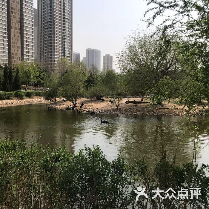 长白岛森林公园图片-北京公园-大众点评网