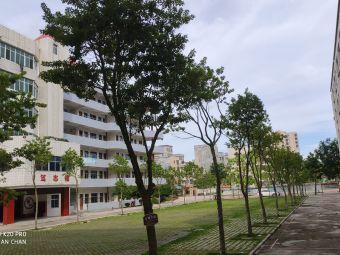 杨梅镇中心小学