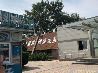 滦县服务区充电站