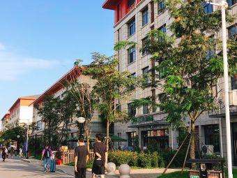 扬州大学广陵学院(新校区)