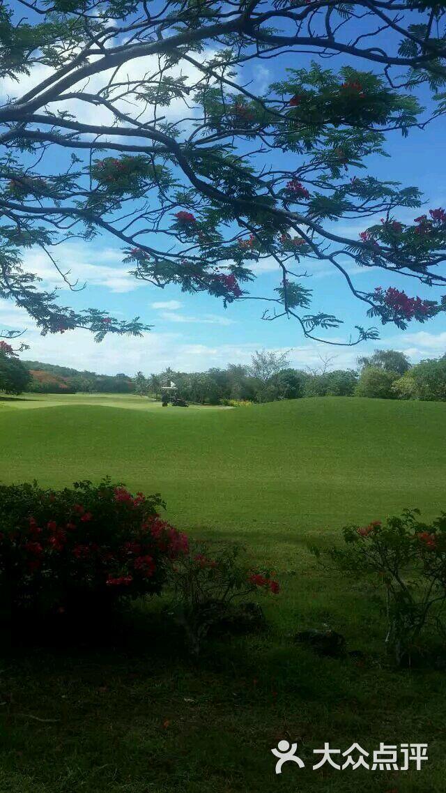 珊瑚海角度假村高尔夫球场图片 - 第4张