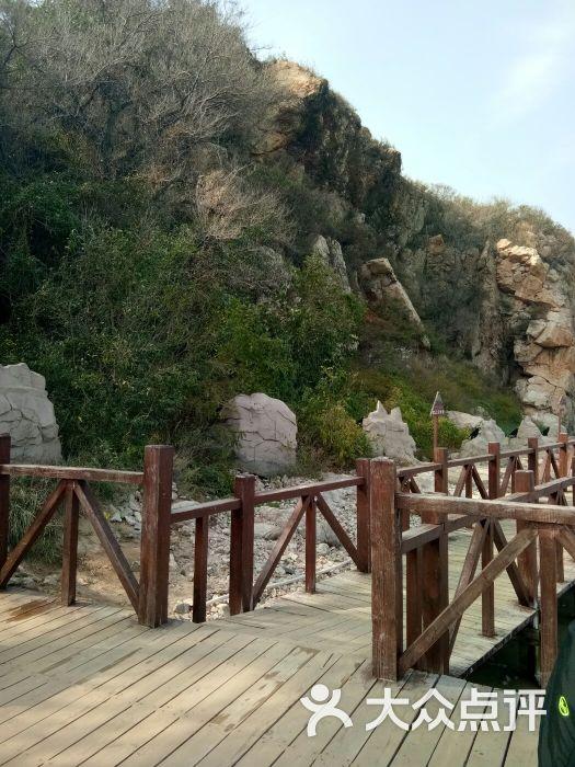 观景木栈道-图片-秦皇岛周边游-大众点评网