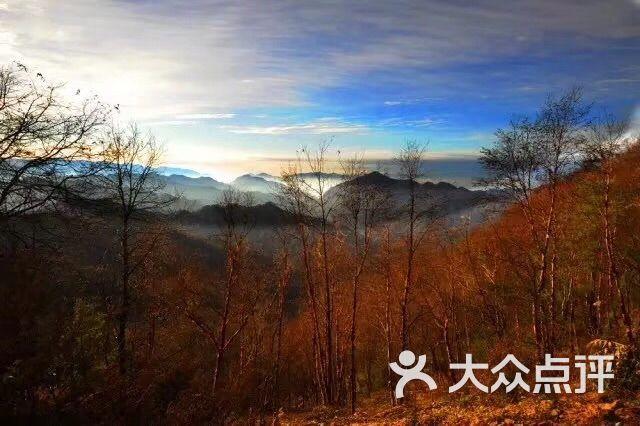 黄柏塬原生态风景区图片 - 第13张