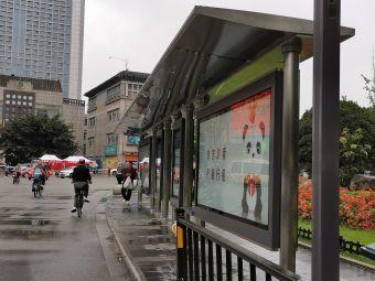 宝光桂湖文化旅游区-桂湖森林广场停车场