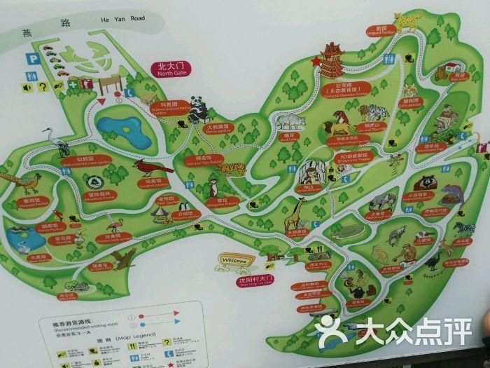 红山森林动物园-图片-南京周边游-大众点评网