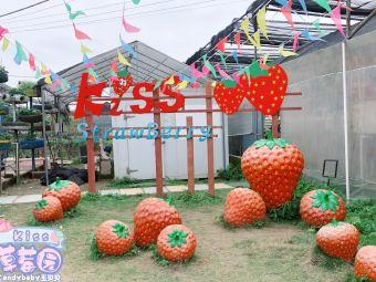kiss草莓园