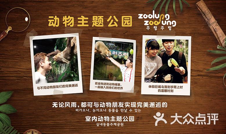 韩国zoolung zoolung 动物主题公园-dpuser_的相册--2